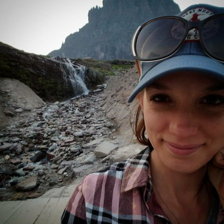 Water fall on the Logan's pass trail